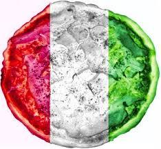 LOGO-Włochy